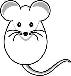 mouse-dost-md